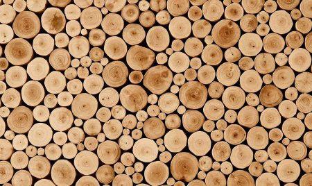 Строительство и материалы из дерева